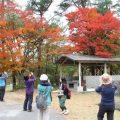 渓谷の紅葉に感動! 鹿川でトレッキングツアー