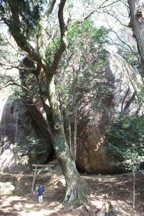 ⑨神秘のスポット「神さん山」トレッキング