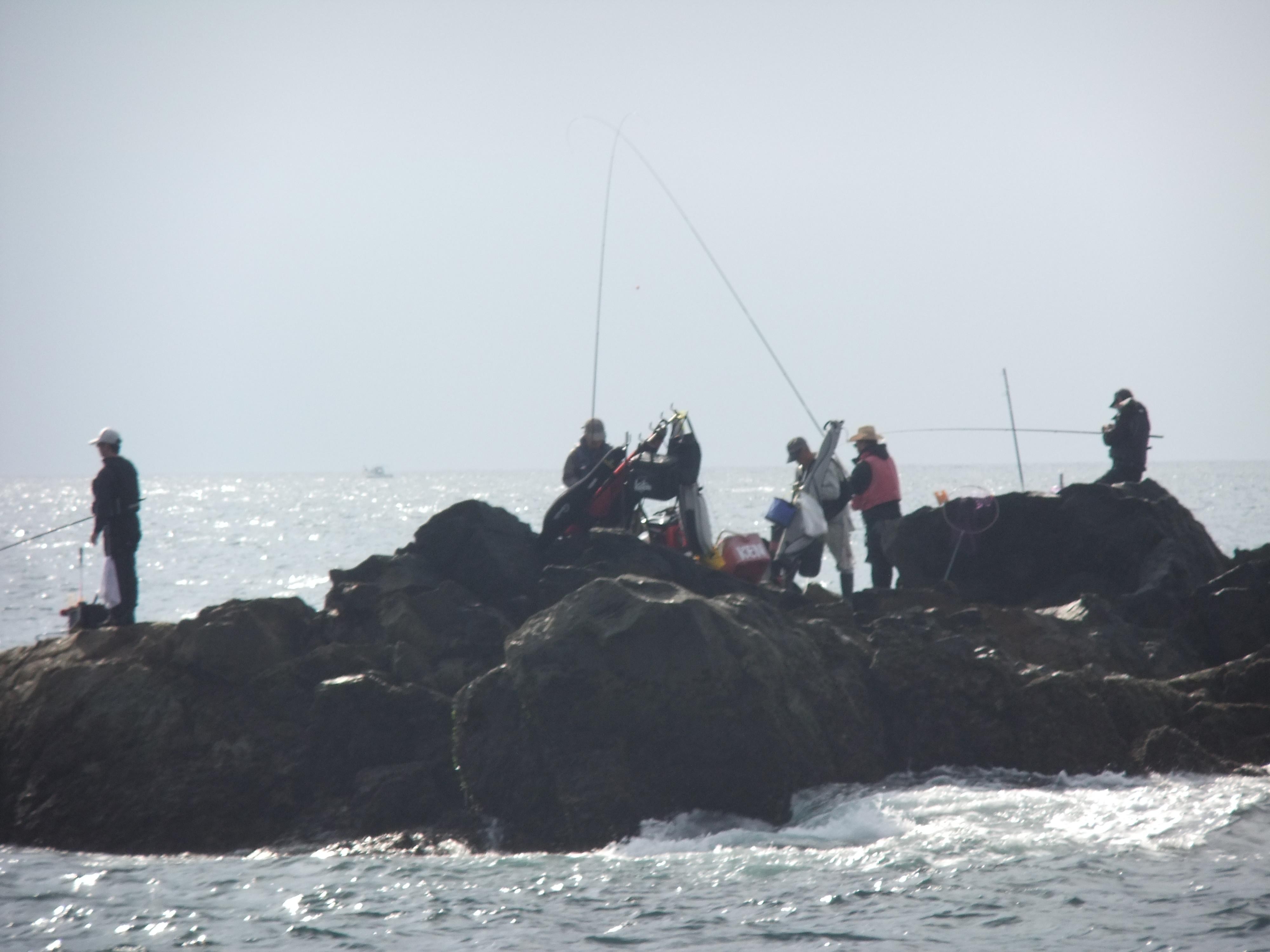 ⑦クロ釣り体験(中級)