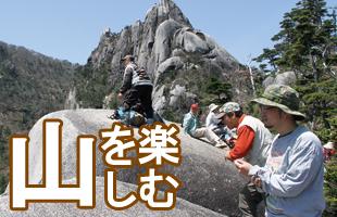 山プログラム