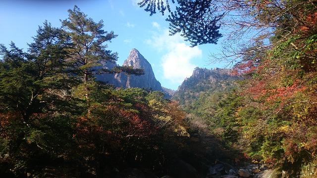 山体験ギャラリー
